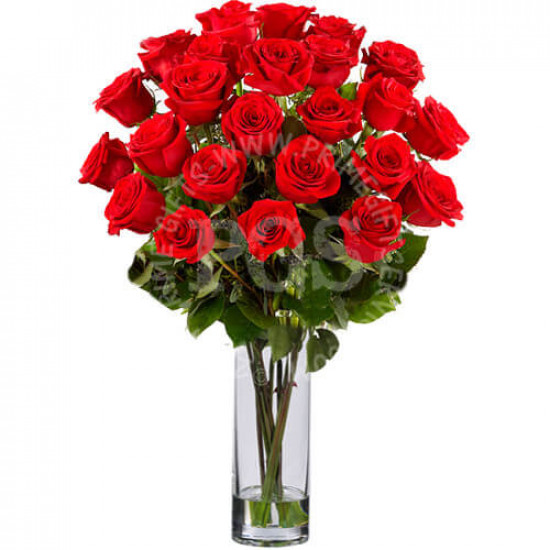 24 Imported Red Roses Bouquet