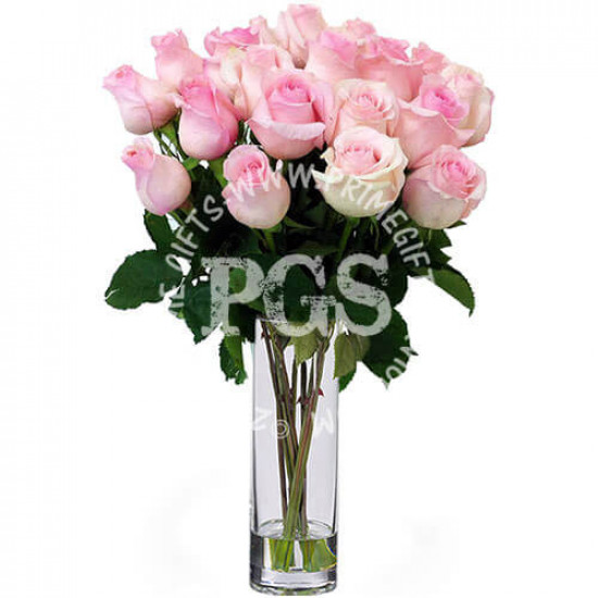 24 Pink Imported Roses