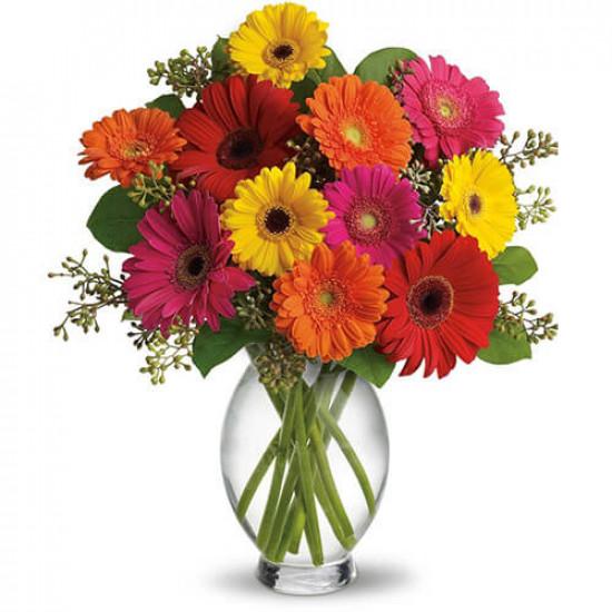 Beautiful Smile Flowers
