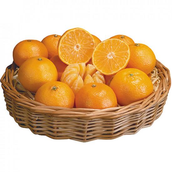 Fresh Oranges 7-8Kg
