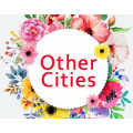 Flowers to Other Cities