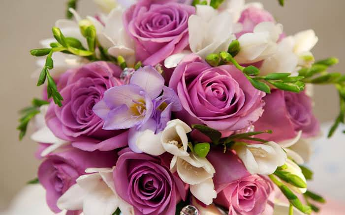 Send New Flowers to Pakistan