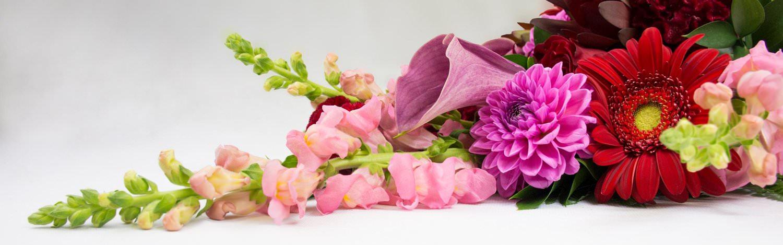 Send Flowers Lahore, Karachi, Islamabad, Rawalpindi and Pakistan